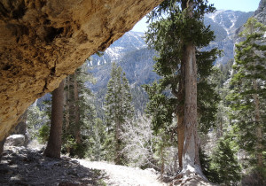 View from Mary Jane Falls Trail Cave, Mount Charleston Area