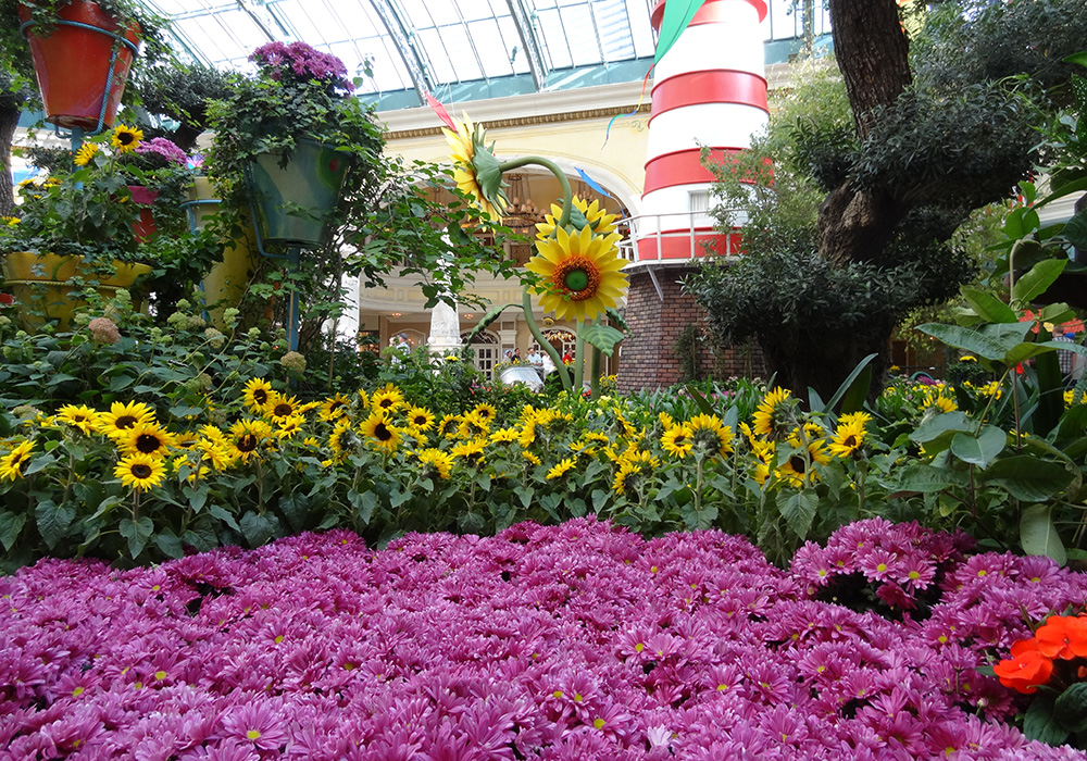 Purple Flower Spread, Bellagio Conservatory and Botanical Gardens, Summer Garden Party 2013