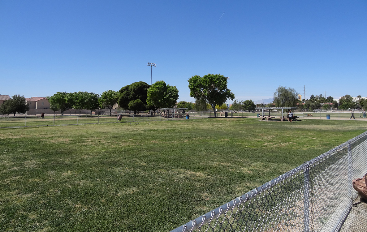 Dog Fanciers Park, Open Area, Las Vegas