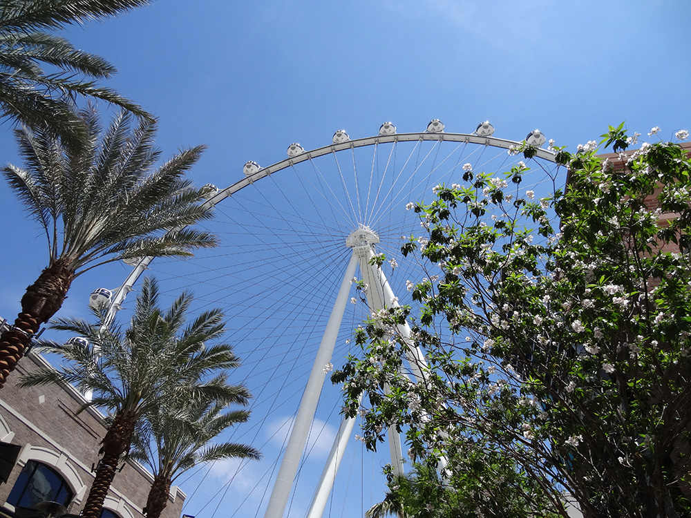 LINQ Area, High Roller, Las Vegas