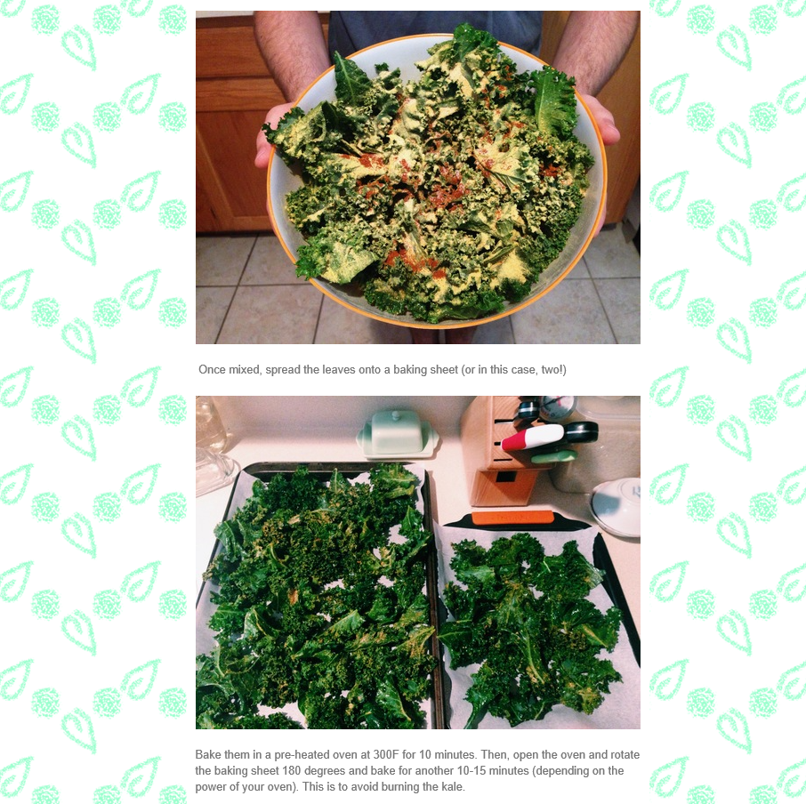 360 Vegan Blog, Kale Chips