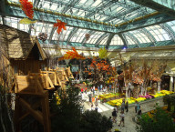 Bellagio Conservatory, Autumn Harvest 2014