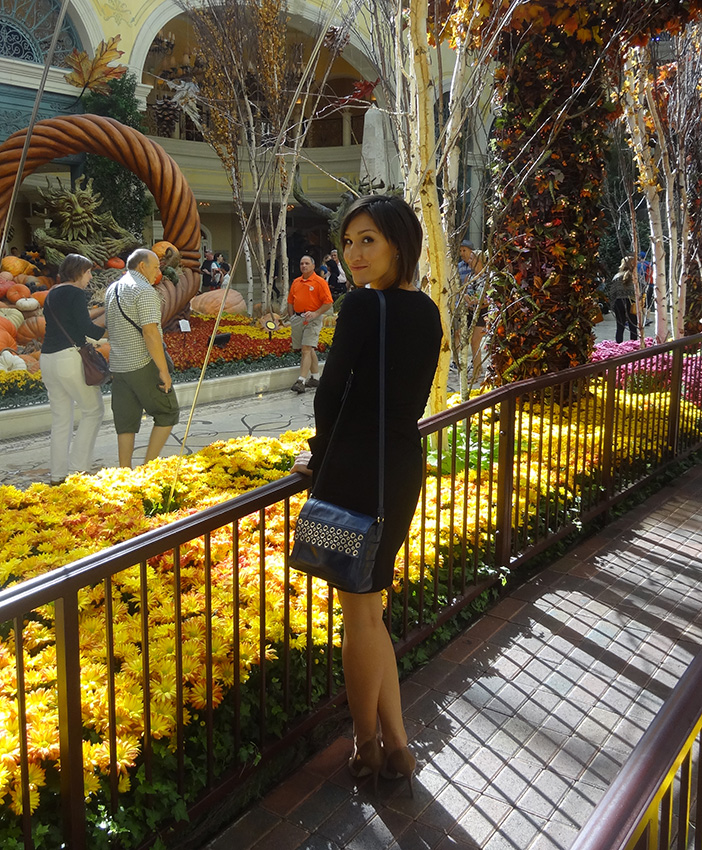 Kseniya in Black Dress, Bellagio Conservatory, Las Vegas 2014