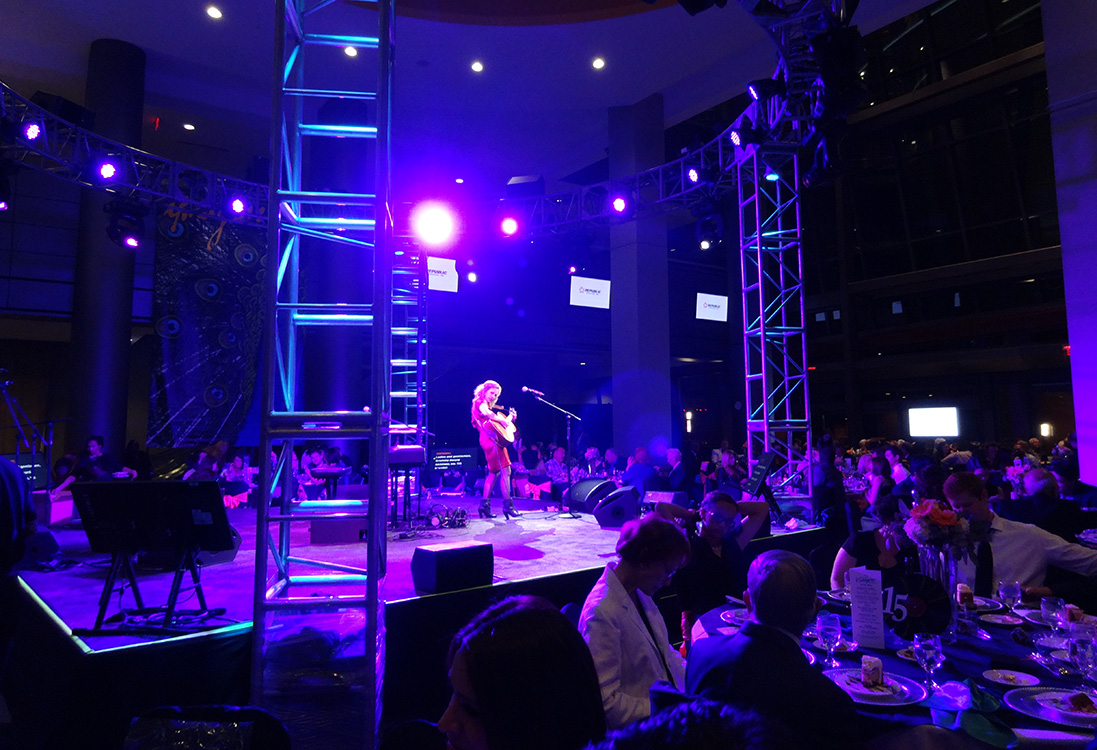 Performance at 4th Annual Imagine Gala, Blind Center or Nevada, Downtown Las Vegas