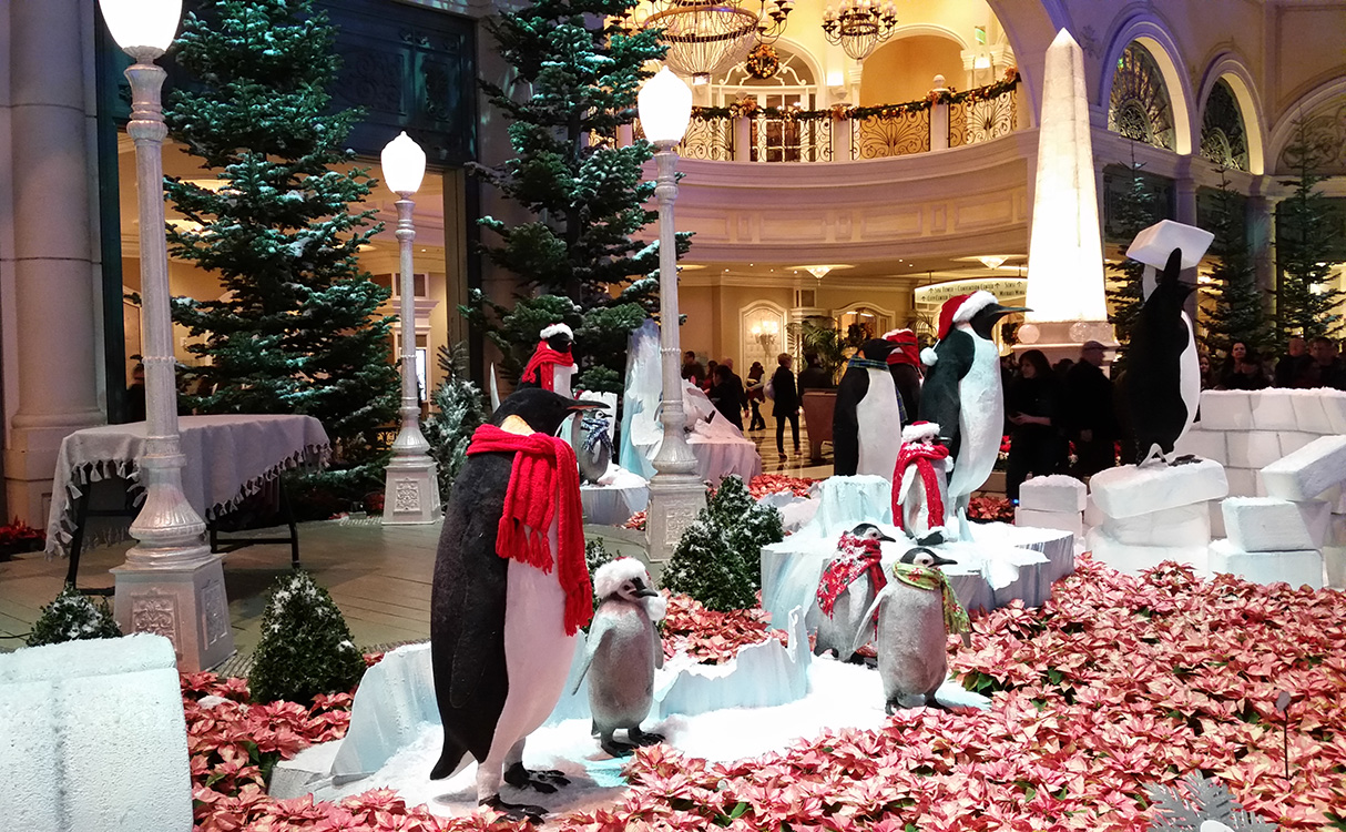 Penguins-Playing-&-Working,-Bellagio-Conservatory-Christmas-Theme,-2014-Las-Vegas