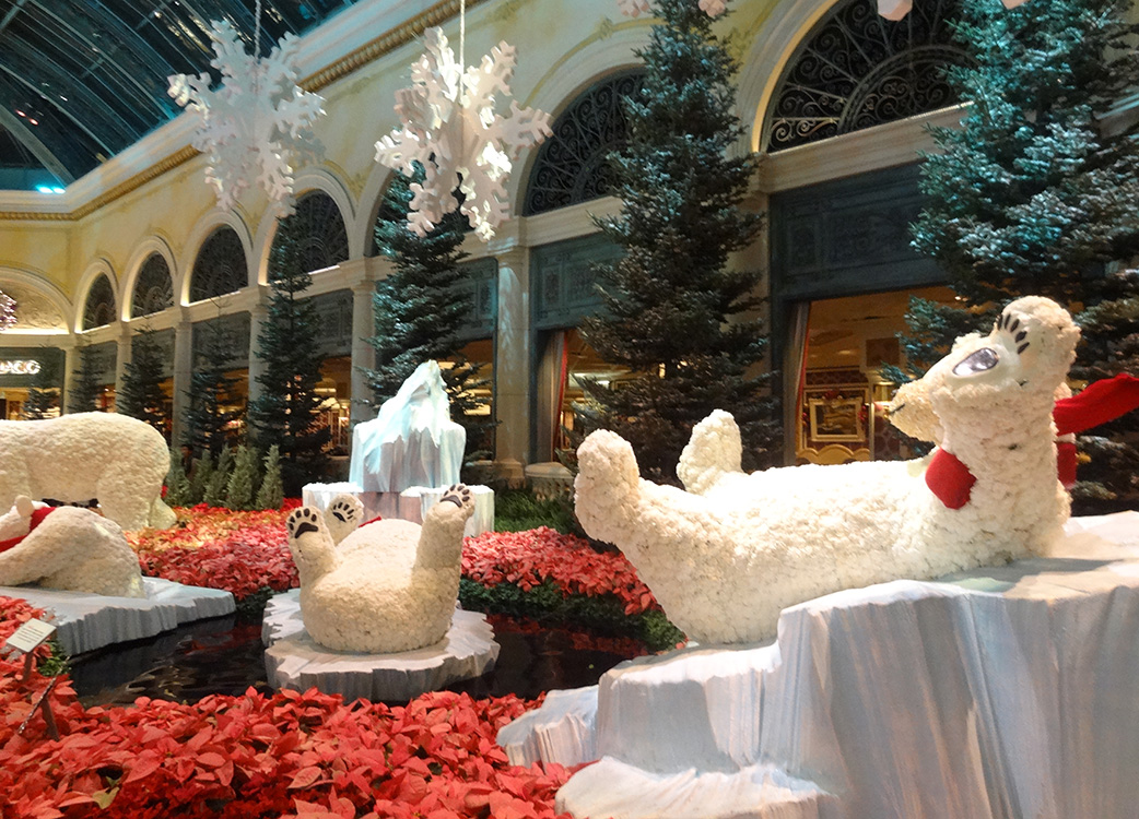 Polar-Bears-Playing,-Bellagio-Conservatory-Christmas-Celebration,-2014-Las-Vegas