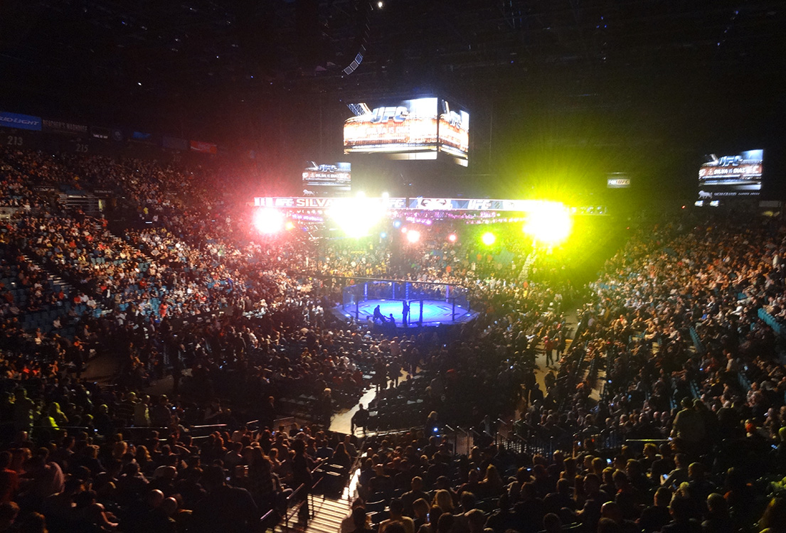 mgm fight night