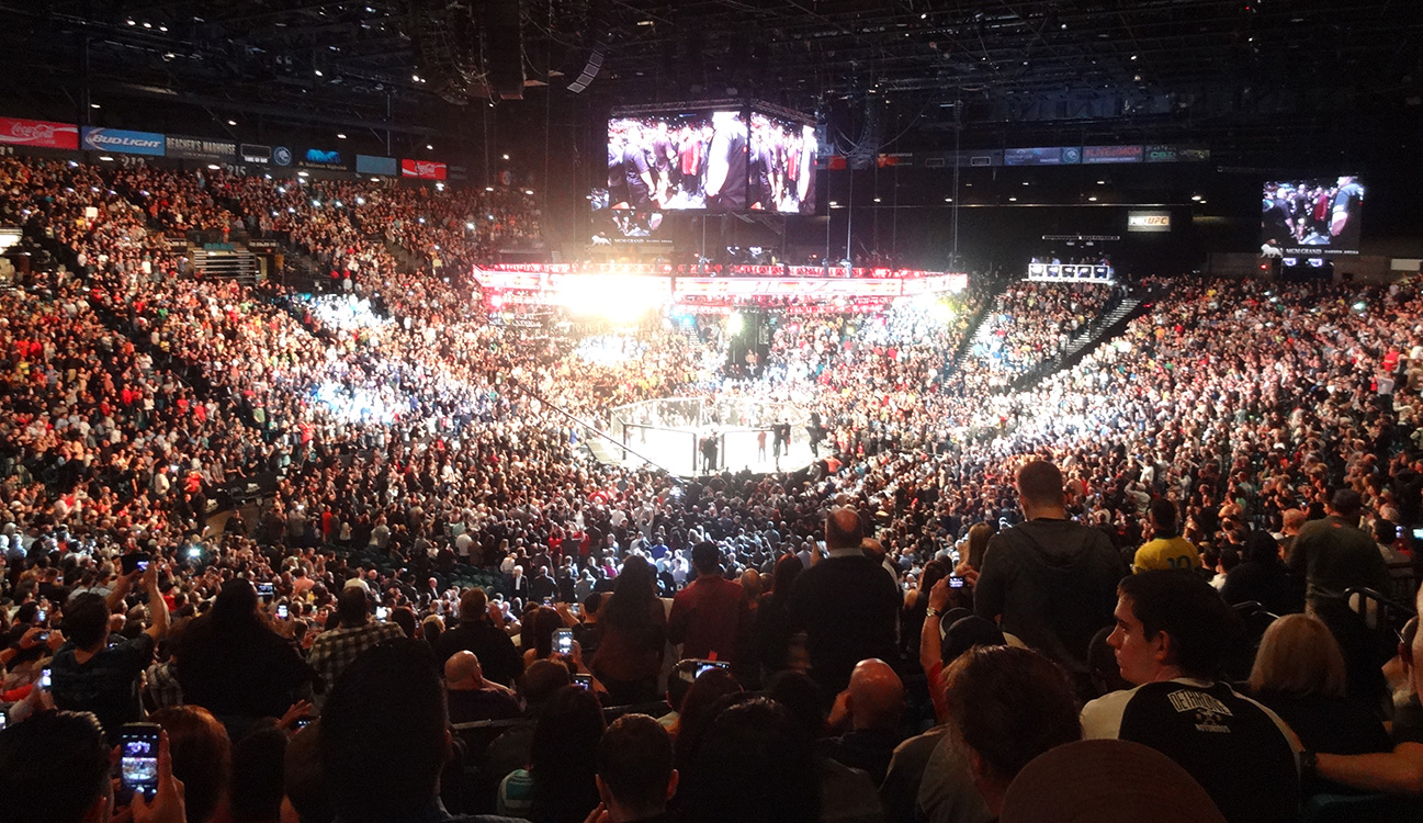 MGM Grand Garden Arena UFC Silva Diaz Las Vegas Top Picks