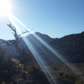 Sunshine-on-Keystone-Thrust-Trail,-Red-Rock-Canyon,-Las-Vegas