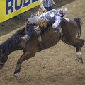Bareback Rider Evan Jayne, National Finals Rodeo, Las Vegas