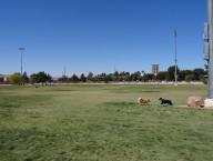Dog Fancier's Park, Eastside