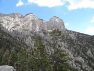 Trail Canyon, Mount Charleston Area