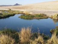 Secret Desert Hot Springs, 80 miles from Vegas